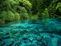 Jiuzhaigou Five-Color Pool in Rain Season