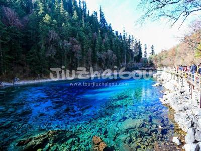 Jiuzhaigou Valley Five-Color Pool