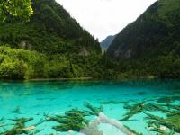 Jiuzhaigou in June